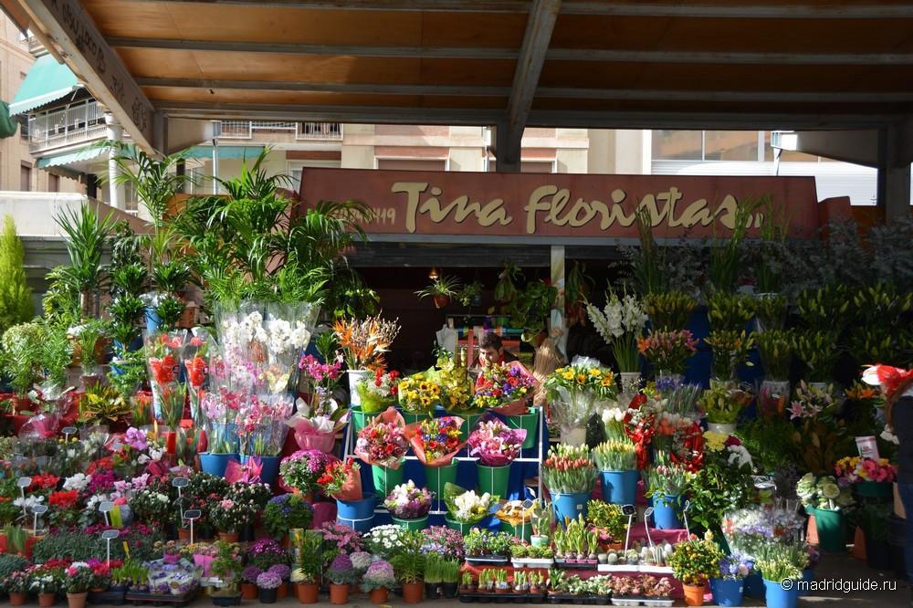 На заднем дворе цветочный рынок